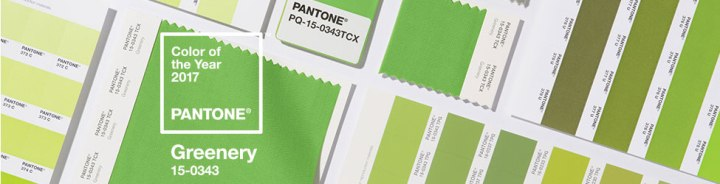 GREENERY – PANTONE COLOR OF 2017